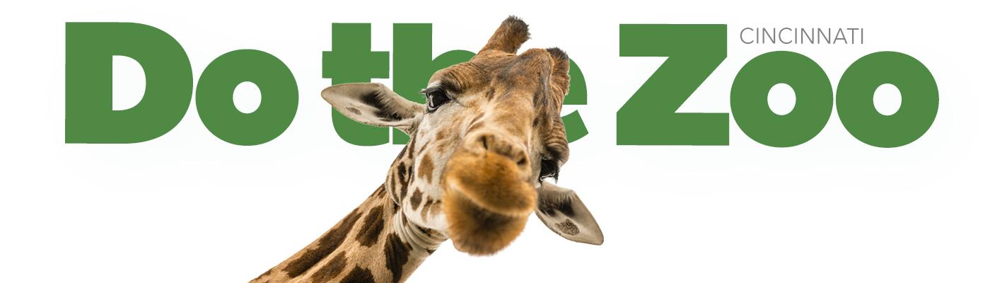 Do the Zoo Giraffe