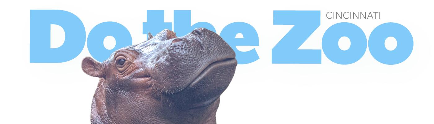 Do the Zoo Hippo
