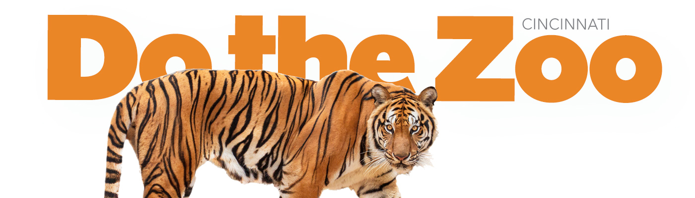 Do the Zoo Tiger